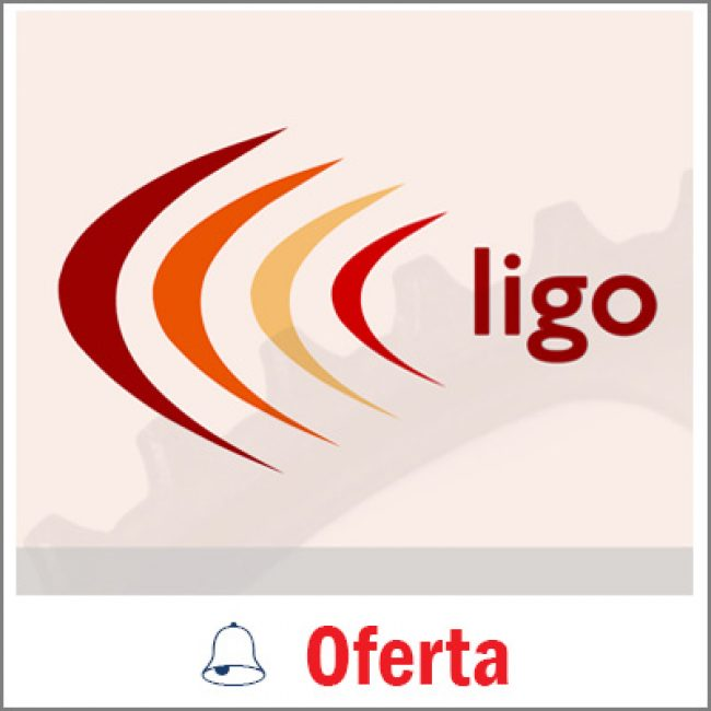 Ligo Accountants Ltd
