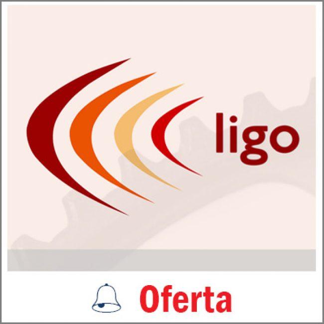 Ligo Accountants Ltd